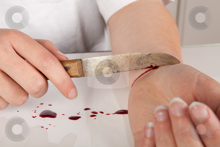 Is humanity suicidal essay