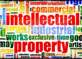 INTELLECTUAL PROPERTY RIGHTS - Indian Kanoon