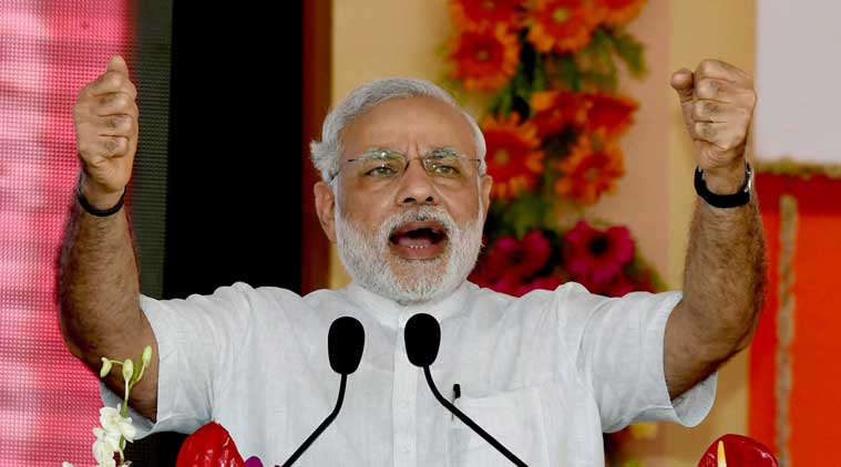 BJP planned to celebrate one year of Modi in PMO