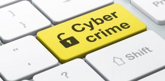 Article: Cyber Crimes and Investigations
