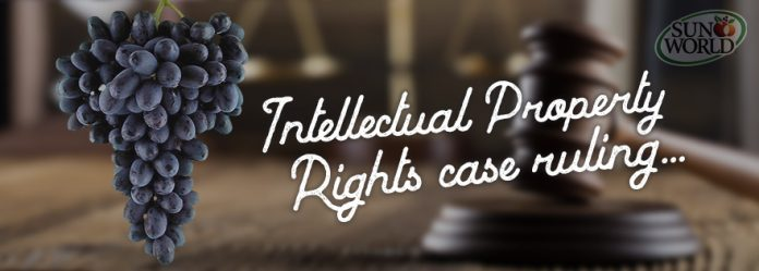 Top 10 Landmark Judgements of Intellectual Property Rights Law