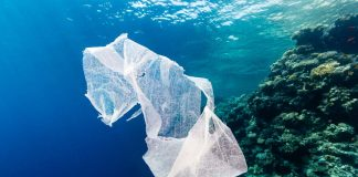 Kenya pollution crackdown: World's toughest law against plastic bags passed by Kenya