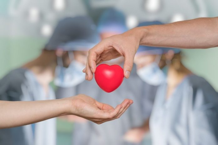 New Law Enacted In The Netherlands Making All Adults Organ Donors Unless They Opt Out