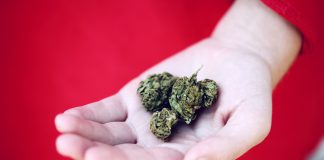 Marijuana- Benefits And Defects Of Medical And Recreational Marijuana