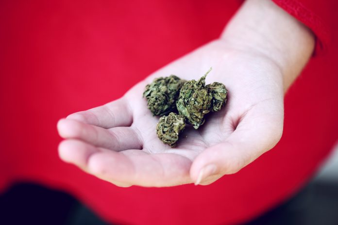 Marijuana- Benefits And Defects Of Medical And Recreational Marijuana